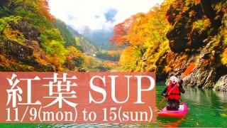 奥多摩 紅葉SUPツアー -11月9日 ~ 15日-