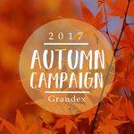【期間限定】お得な秋キャンペーンスタート