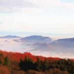 東京から1番近い雲海スポット!?秩父で雲海が見れる!