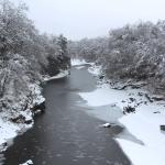 2年ぶりに長瀞、奥多摩で大雪が降った!