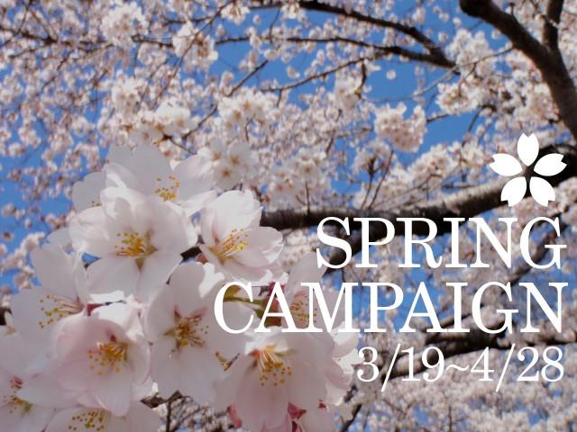 """""""春""""キャンペーン"""