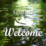 【期間限定】春はお得なキャンペーン中!