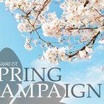 【期間限定】春のお得なキャンペーン